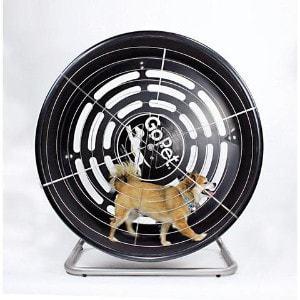 GoPet CG4012 Dog Powered Tread Wheel – Small