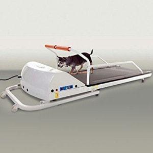 GoPet Petrun Pr710 Foldable Dog Treadmill