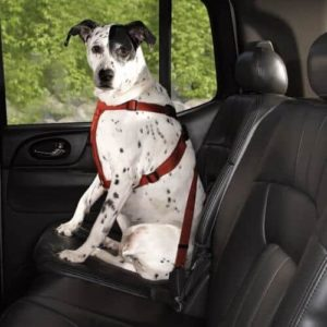 HDP Dog Safety Car Harness