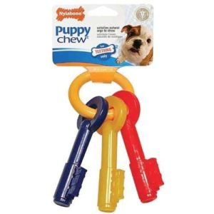 Nylabone Just For Puppies Key Ring Bone