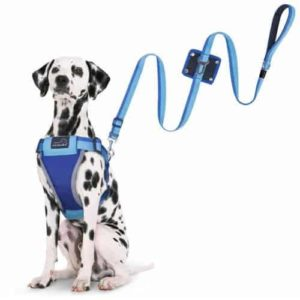 PETBABA Dog Seat Belt Harness Leash