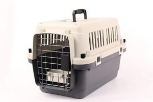 Pet Kennel Direct 22 Airline Approved Plastic Dog Carrier