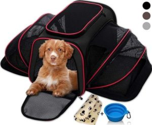 Petyella Pet Carrier for Small Dogs and Cats