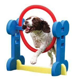 Rosewood Pet Agility Hoop