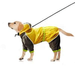 Beirui Dog Raincoat Waterproof slicker