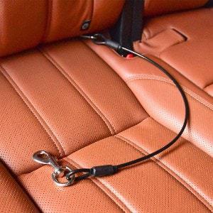 CHEDE Dog Car Seat Belt Restraint