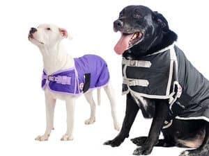 Derby Originals 600D Waterproof Dog Coat Insulated