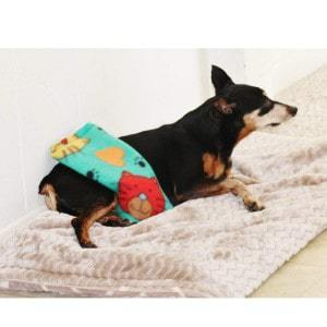 Hot Cold Products Small Pet Heating Pad