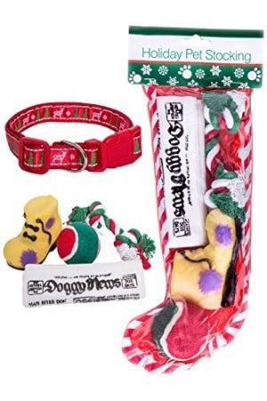 Combined Stockings for Dogs + Christmas Dog Collar Bundle