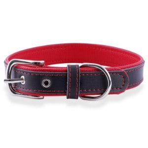 Epic Rogue Leather Dog Collar
