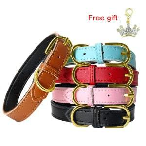 PET ARTIST Classic Soft Padded Leather Dog Collar