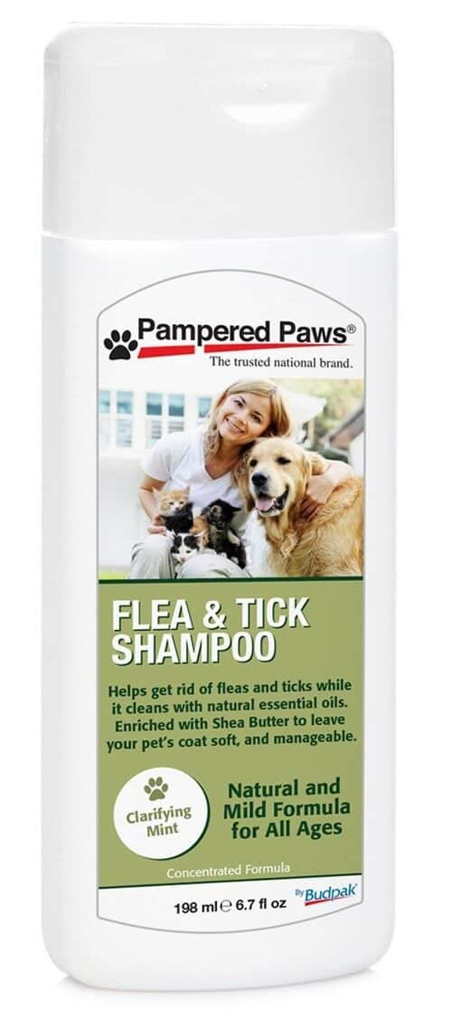 Pampered Paws Flea and Tick Control Shampoo
