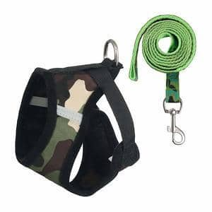 Petetpet Puppy Harness and Leash Set