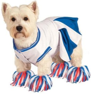 Deluxe Cheerleader Pet Costume