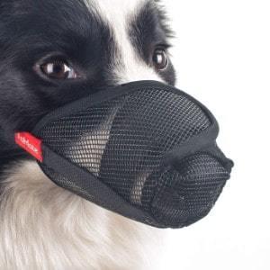 FOMATE Dog Puppy Muzzle