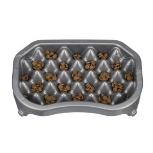 Neater Pet Brands Gentle Slow Feeding Bowl