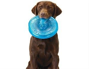 Orka Flyer Rubber Durable Frisbee