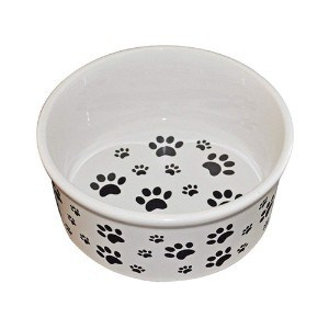 Premium Connection Ceramic Dog Bowl