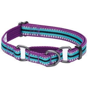 Blueberry Pet Multi-Colored Stripe Collection