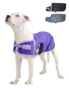 Derby Originals 600D Waterproof Dog Coat Insulated