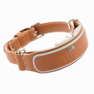 Link AKC Smart Dog Collar with GPS Tracker & Activity Monitor