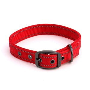 Max and Neo MAX Reflective Metal Buckle Dog Collar