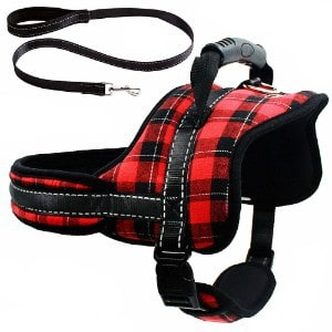 Mihachi Dog Harness with Leash with Handle