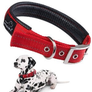 PETBABAB Padded Dog Collar