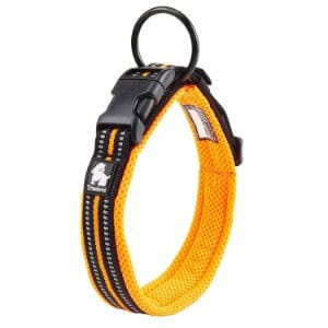 Pettom Adjustable Nylon Pet Collar