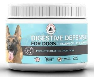 Power to Your Pet Digestive Defense