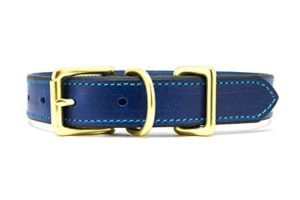 Genuine Collars Royal Blue Leather Dog Collar