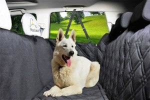Meadowlark Dog Seat Cover
