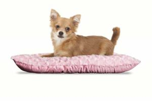 FurHaven Pet Kennel Pillow Pad