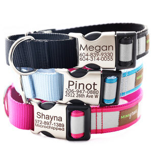 Mimi Green Personalized Reflective Martingale Collars