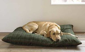 Orvis Tattersall Pillow Dog Bed