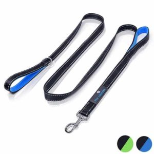 Paw Lifestyles Heavy Duty Dog Leash