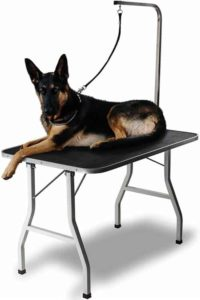 Paws & Pals Grooming Table for Dogs
