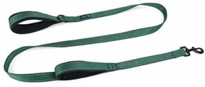 Waggin Tails Soft and Thick Dual Handle Dog Leash