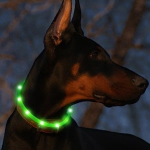 BSEEN Glowing Pet Safety Collars