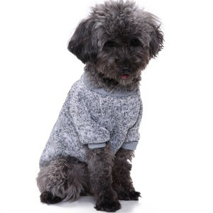 Fashion Focus On Thick Dog Shirt