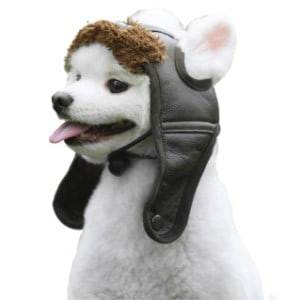 HAOCOO Dog Aviator Hat