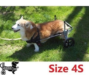 Huggiecart Dog Wheelchair for Short Dogs