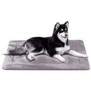 JoicyCo Dog Bed Large Crate Pad