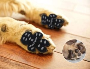 LOOBANI PadGrips丨Dog Paw Protector Traction Pads