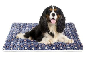 Mora Pets Ultra Soft Pet (Dog/Cat) Bed with Cute Prints | Reversible Fleece Crate Bed Mat