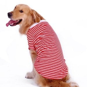 Petroom Large Dog Shirt