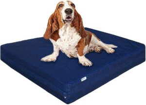 Premium Orthopedic Memory Foam Dog Bed for Small, Medium to Extra Large Pet