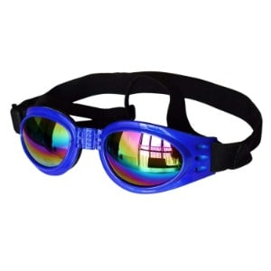 Spet Kever Dog Sunglasses