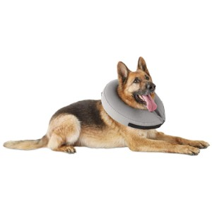 Well & Good Inflatable Collar for Dogs