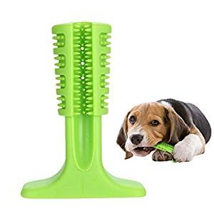Witspace Pet Dog Molar Stick
